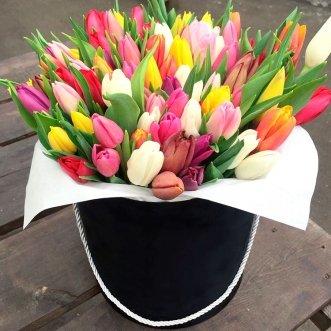 101 разноцветный тюльпан в коробке