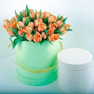 51 оранжевый тюльпан в коробке