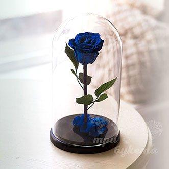 Синяя роза в колбе 26 см